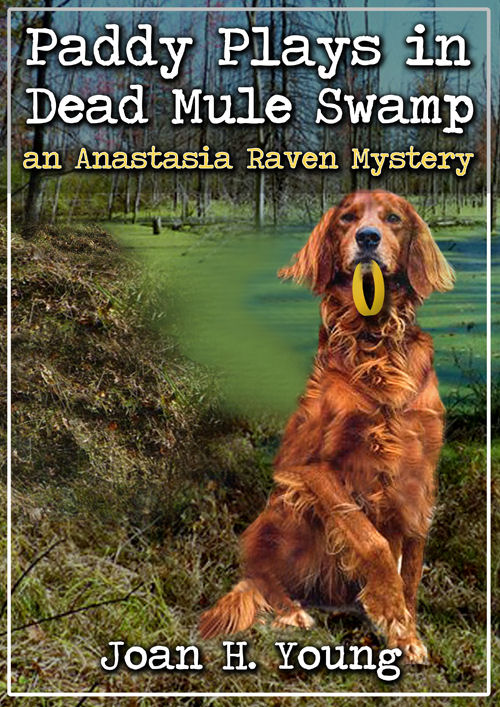 Paddy Plays in Dead Mule Swamp